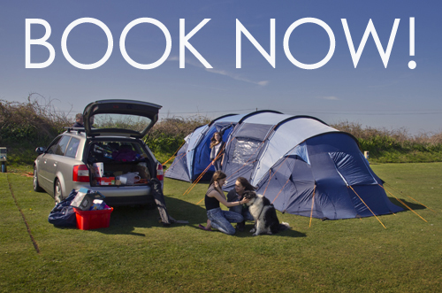 Globe Vale book now Camping-pic
