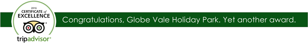 Globe Vale Tripadvisor award