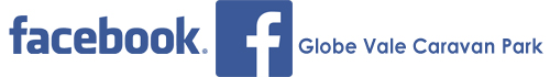 globe-facebook