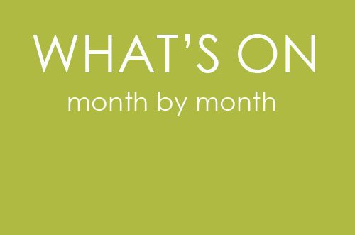 what's on - month by month